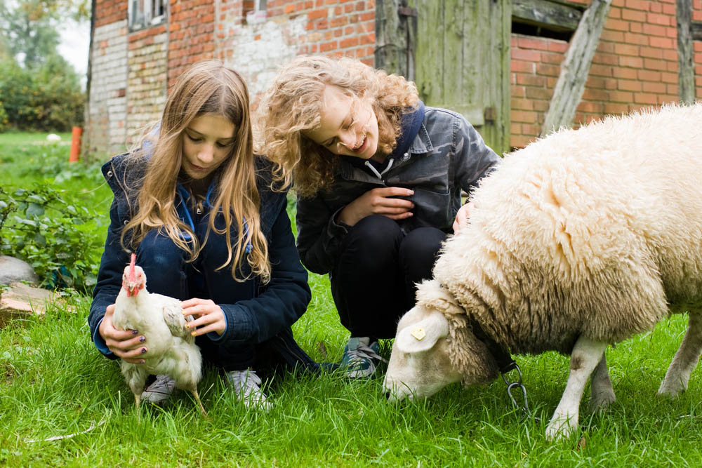 Unschooling Outdoors: Different Types of Farms